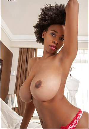 Black Tits Porn Porn